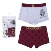 Harry Potter 2-pack Boxer Shorts